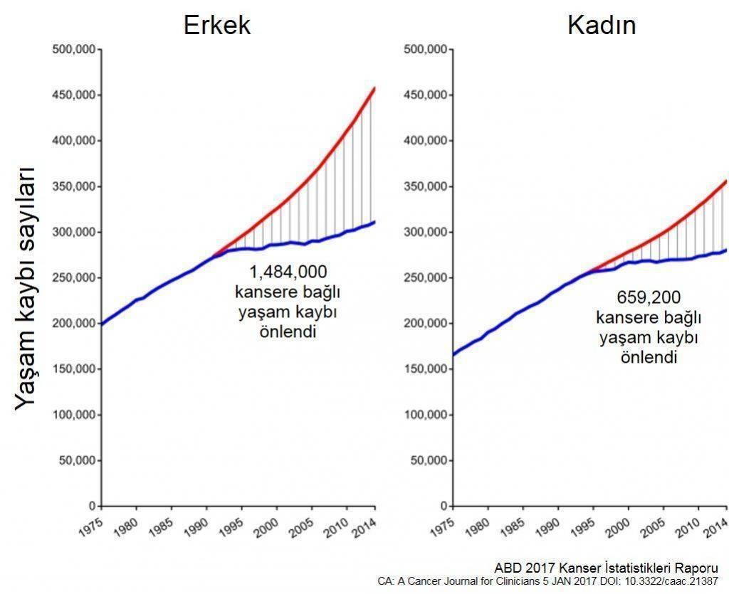 kanser tıbbındaki gelişme 2 milyon kişinin hayatını kurtardı 1024x835