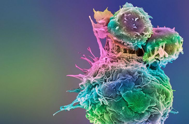Kanserde immünoterapi tedavisinin tarihi