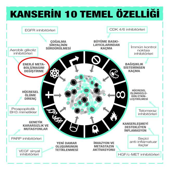 kanserin 10 temel özelliği ve herbirine karşı geliştirilen antikanser ilaç sınıfları