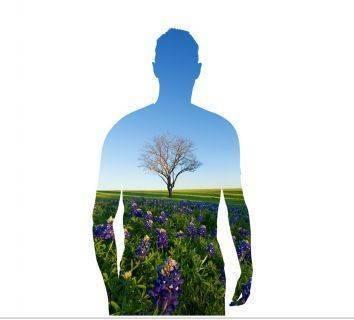 Kansere neden olan genler, bitkiden insana geçmiş olabilir – Zıplayan Genler