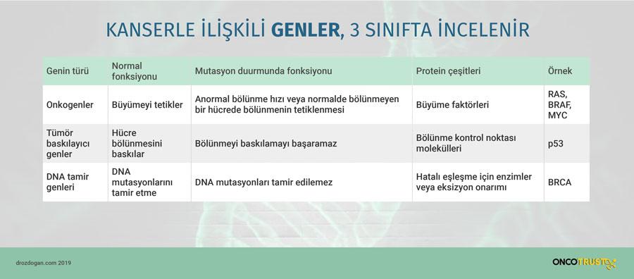 kanserle iliskili genler 3 sinifta incelenir