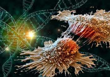 Karsinogenez nedir? Normal bir hücre nasıl kansere dönüşür?