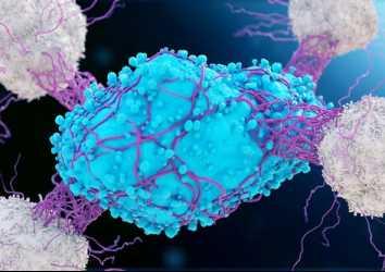 Kanserde 2 immünoterapinin kombinasyonu fark yaratabilir: CAR T hücre ve onkolitik virüs