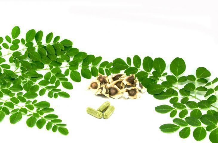 Kontrollü aminoasit (protein kısıtlama) diyet terapisi ve kanser