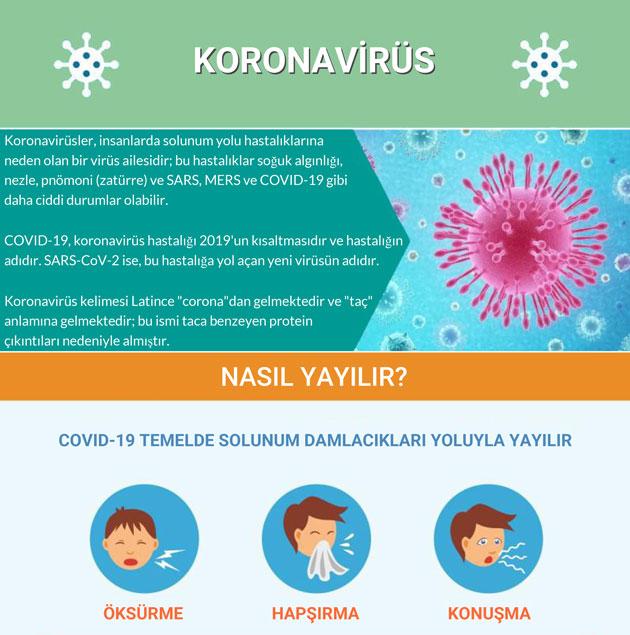 koronavirus nasil yayilir