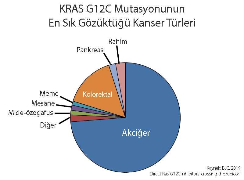 kras g12c mutasyonu pozitif kanserler