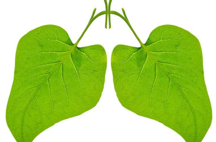 Küçük hücreli akciğer kanserinde en iyi başlangıç tedavisi nedir?