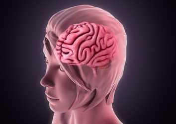 Leptomeningeal metastaz nedir? İmmünoterapi bu durumda ne kadar etkilidir?