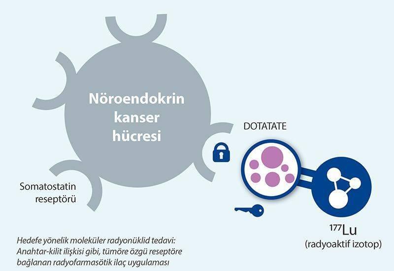 lutesyum lu 177 dotatate nöroendokrin tümör tedavisi