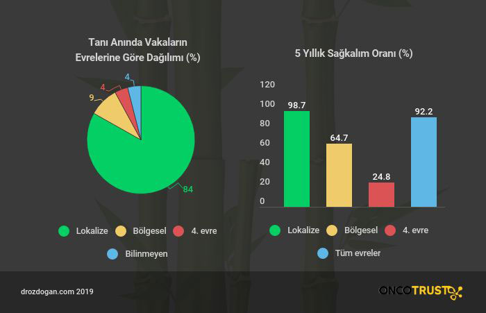 melanom sagkalim istatistikleri seer data