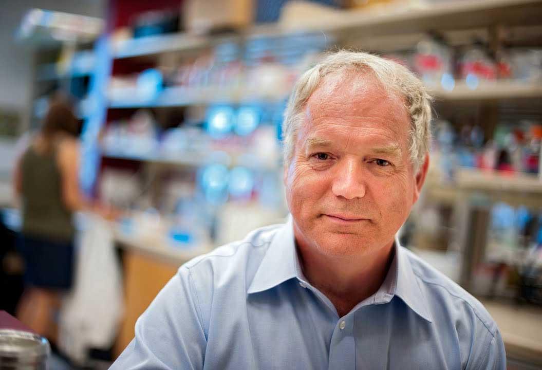 michael houghton nobel tıp 2020 hepatit c virüsünün genomonu keşfeden bilim insanı