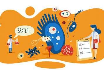 Mikrobiyota, kolon ve rektum kanseri oluşumunu nasıl etkiler?