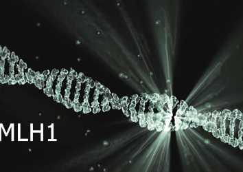 MLH1 mutasyonu nedir? Hangi kanserlerin riskini artırır?