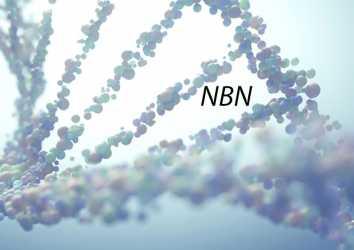 NBN mutasyonu nedir? Hangi kanserlerin riskini artırır?