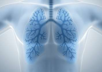 New Prognostic Markers in Patients with Lung Cancer Treated with Immunotherapy – NLR and PLR