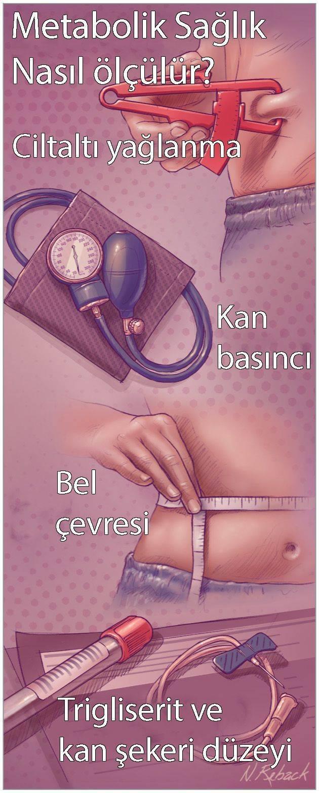 normal kilolu metabolik obezite cilt altı yağ kan basıncı hipertansiyon kan yağları kolestero
