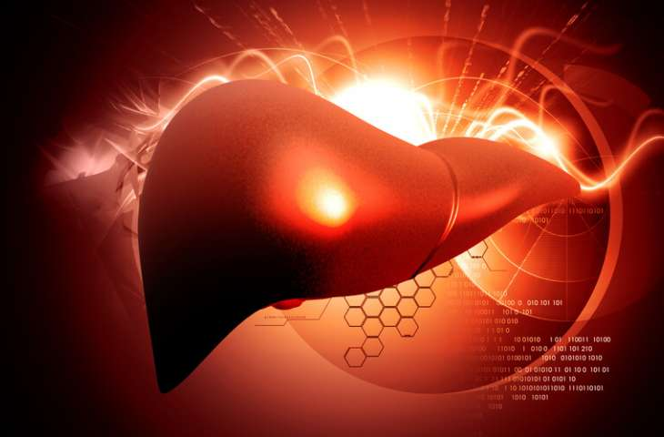 Nöroendokrin tümör karaciğer metastazlarında Ho-166 tedavisi etkili bulundu