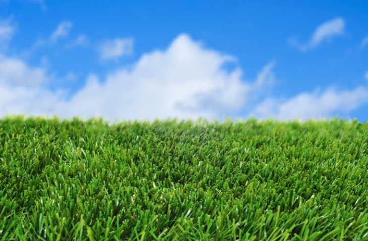 Ölmekte olan bir adamın karısına hediyesi – Yapay çimleri