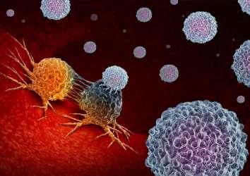 PARP inhibitörleri akciğer kanserinde immunoterapinin gücünü artırabilir
