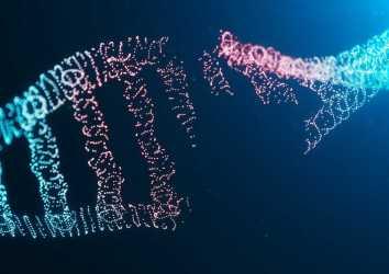 PARP inhibitörleri – Over kanseri tedavisini değiştiren yeni bir ilaç sınıfı