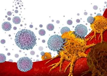 Pembrolizumab (Keytruda) adlı kanser immünoterapisi için 6 haftalık doz FDA onayı aldı