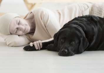 Pet (evcil hayvan) terapisi nedir? Kimler için uygundur ve nasıl uygulanır?