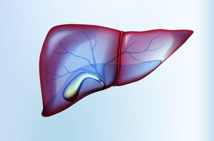Safra yolu kanserinde immünoterapi nivolumab ile yüksek hastalık kontrol oranları