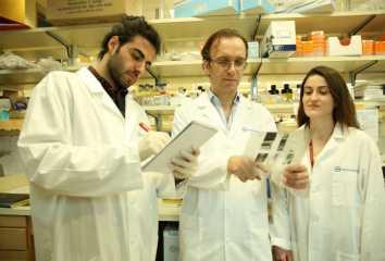 Semir Beyaz, Yağlı Diyetin, Hücre İletişimini Bozarak Kanseri Nasıl Tetiklediğini Gösterdi