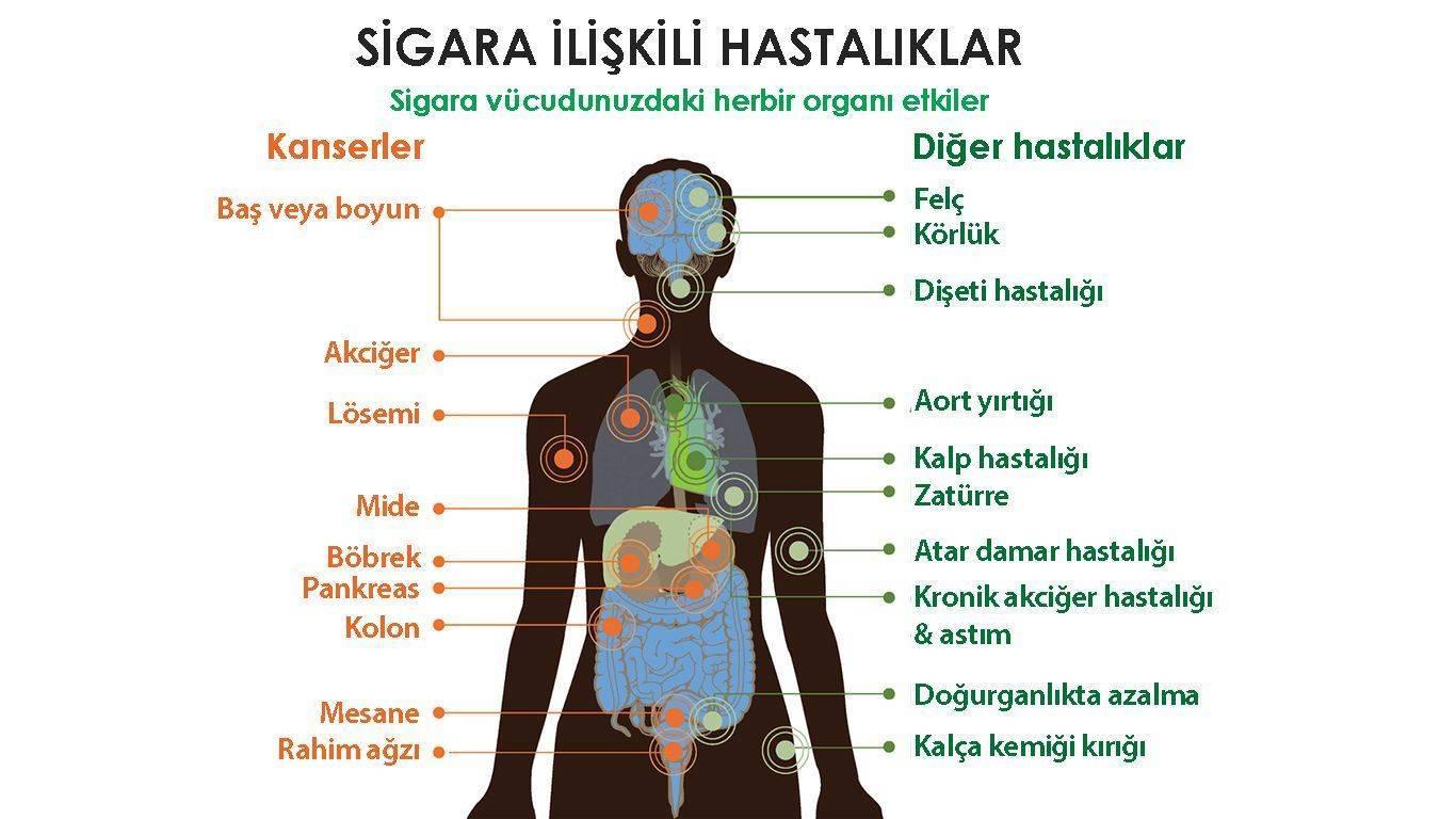 sigaranın zararları nelerdir sigara hangi hastalıklara yol açar
