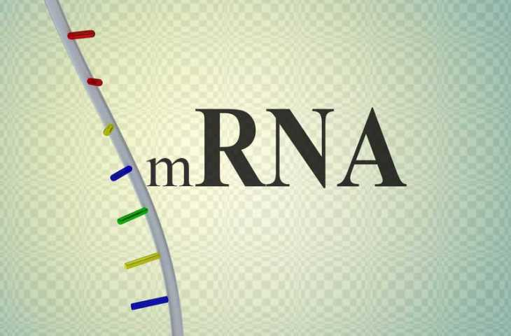 Tıpta yeni bir devir başlıyor: mRNA aşıları!