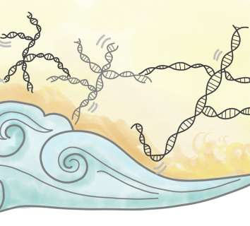 Zıplayan genlerin öyküsü ve kanserde önemi