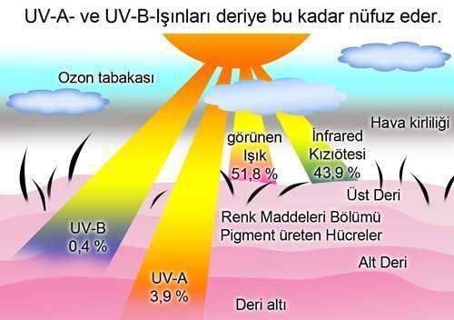 ultraviyole ışınları nedir uva uvb cilt kanseri riski