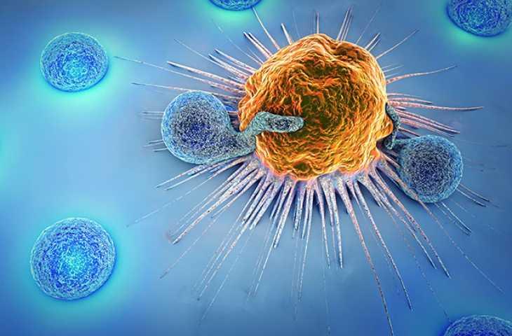 Yeni Bir CAR T-Hücre Tedavisi Öncül B Hücreli ALL İçin FDA Onayı Aldı