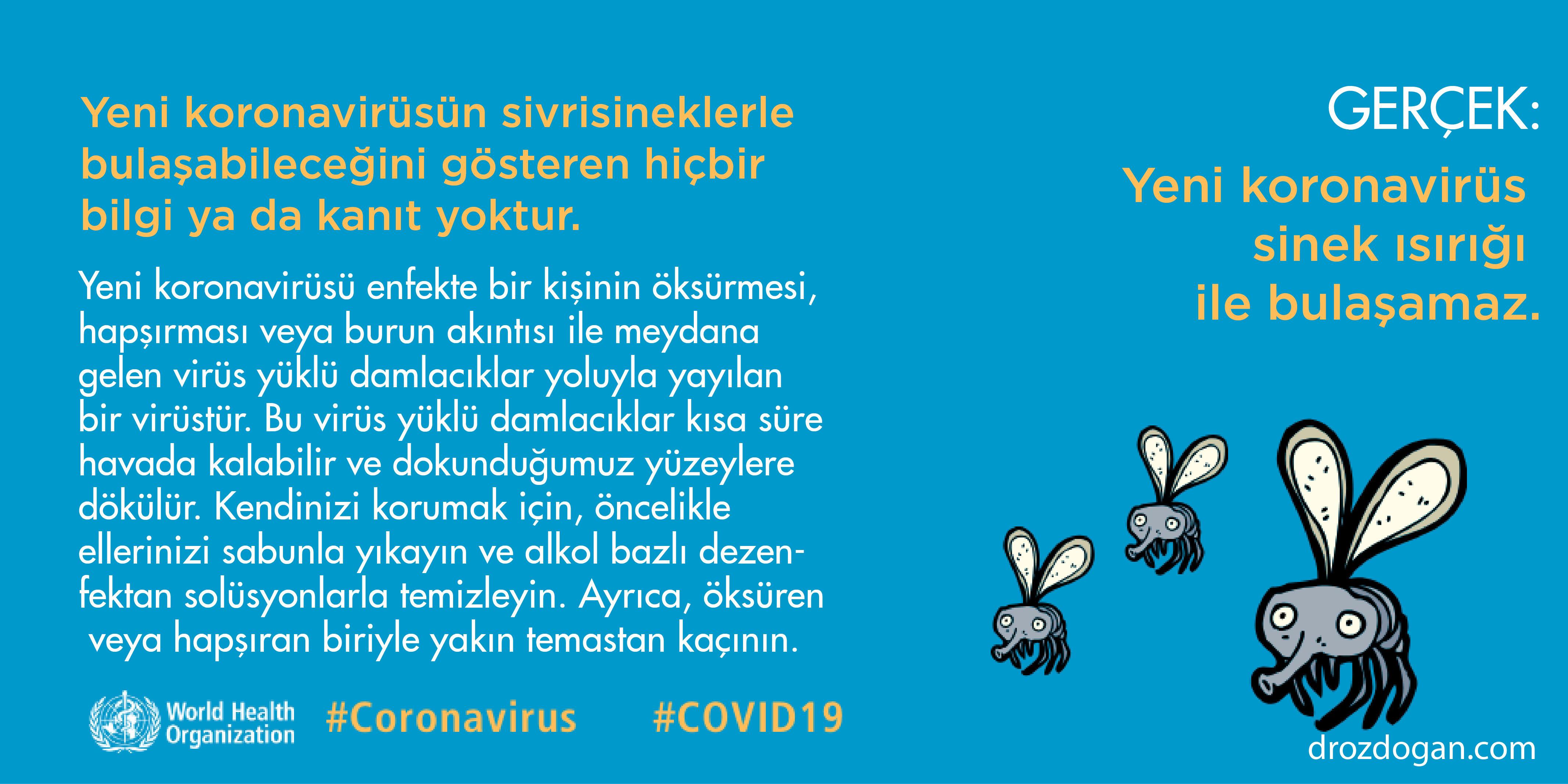yeni koronavirüs sivrisinekle bulaşır mı