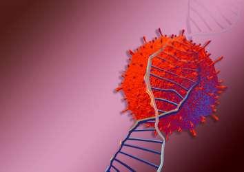 Yeni koronavirüste 81 nükleotitlik kritik bir mutasyon saptandı! Virüs, mutasyonlar ile zayıflayabilir mi?